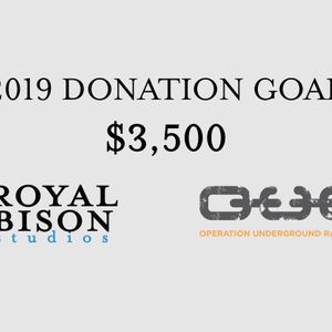 Royal Bison Studios 2019 Donation Goal