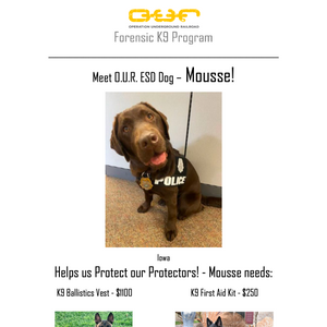 Protect Mousse - Des Moines, Iowa