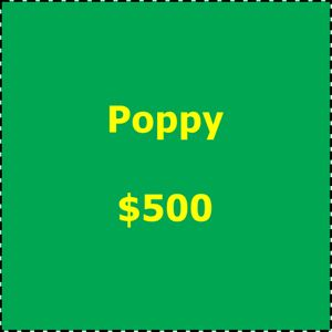Art in Bloom 2019 Underwriting Poppy