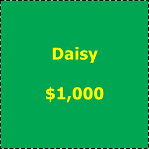 Art in Bloom 2019 Underwriting Daisy