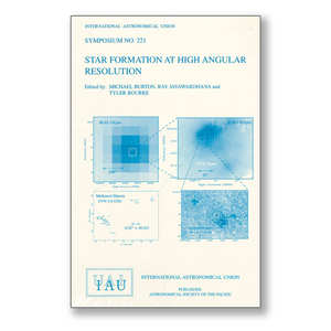 Vol. 221 – Star Formation at High Angular Resolution