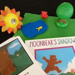 Bear's Shadow Activity
