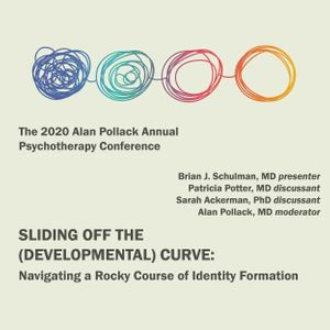 The 2020 Alan Pollack Psychotherapy Conference on the Nature of the Transference