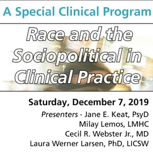 Race and the Sociopolitical in Clinical Practice (A Special Clinical Program for Early Career Clinicians and Trainees)