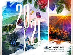 2021 Forever Wild Calendar