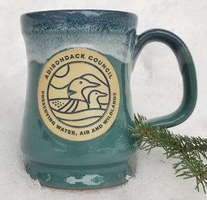 Loon Mug | Teal w/Blue White