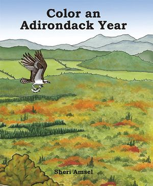 Color an Adirondack Year