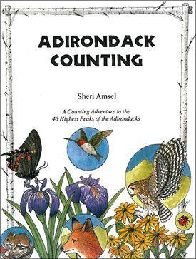 Adirondack Counting