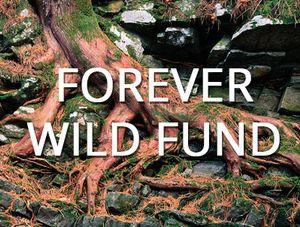 Forever Wild Fund