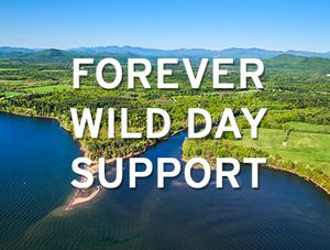 Forever Wild Day Support
