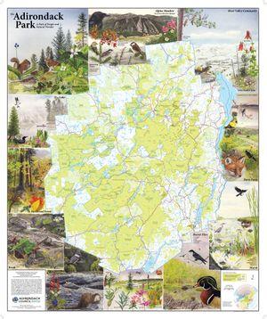 Adirondack Park Map - Laminated