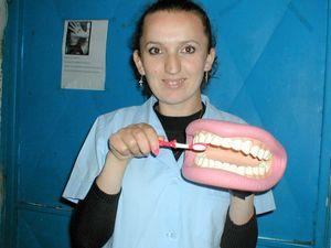 Family Dental Needs
