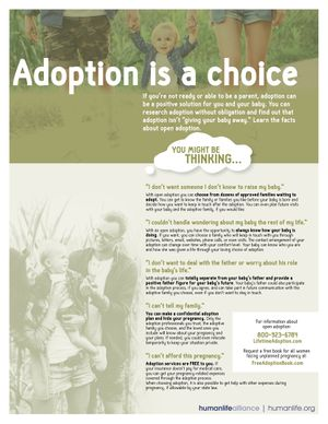 Adoption is a choice Fact Sheet