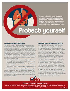 Organ Donation Fact Sheet