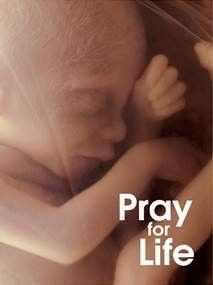 Pray for Life Card