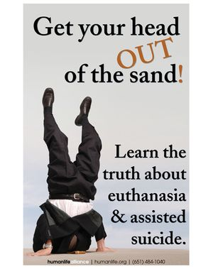 Head in the Sand Poster