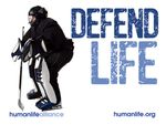 Defend Life Hockey Laptop/Bumper Sticker
