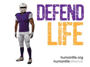 Defend Life Football  Laptop/Bumper Sticker Version 2