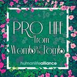 PRO LIFE from Womb to Tomb Laptop/Bumper Sticker