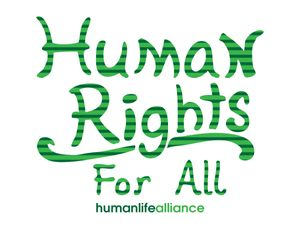 Human Rights for All Laptop/Bumper Sticker