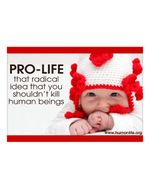 Pro Life Radical Idea Laptop/Bumper Sticker Version 3