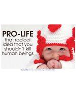 Pro Life Radical Poster