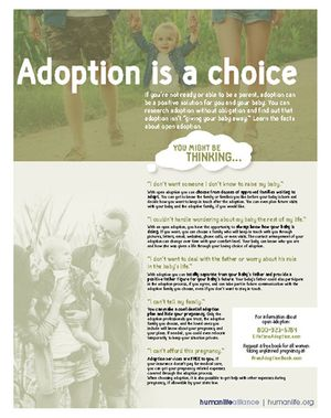 Adoption is a choice Fact Sheet
