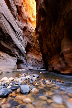 Through the Canyons-Zion
