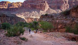 Dusty Trails-Havasupai Canyon