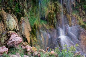 In the Depths-Havasupai Canyon