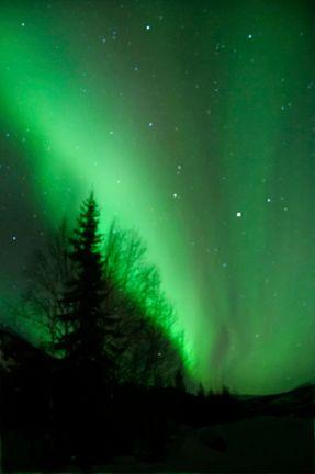 Aurora Ascent
