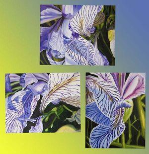 Rocky Mountain Iris Triptych-2021 Annual Open Regional 2nd Place 2D Winner