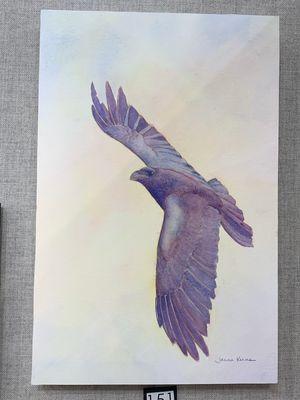 Sunrise Raven