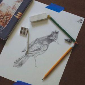 Pencil-Paper-Picture