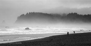 Fog and Play on the Beach