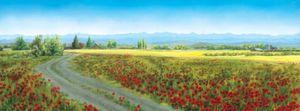 Wild Poppy Spring