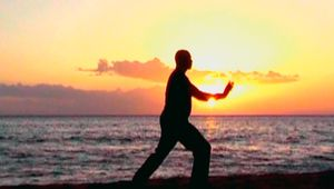 Tai Chi for Health * Short Set Learning & Practice