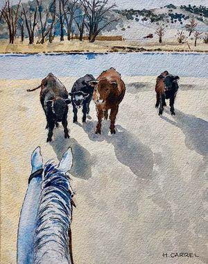 Potty Calves at the FL Ranch