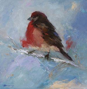 Winter Finch