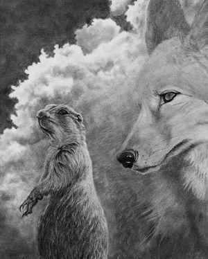 When Prairie Dogs Dream III