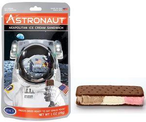 Astronaut Freeze Dried Ice Cream Sandwich - Neapolitan