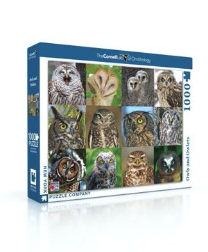 1000 piece Puzzle Owls and Owlets