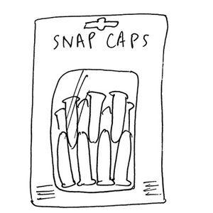 .22 LR Snap Caps