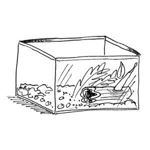 Terrarium Tanks