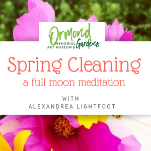 Spring Cleaning: A Full Moon Meditation on 3/21/19 at 6-7:15pm