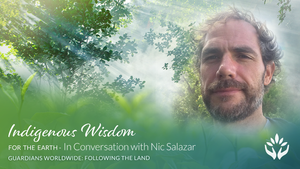 Guardians Worldwide ~ Indigenous Wisdom for the Earth