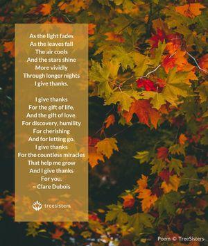 Giving Thanks - Gratitude