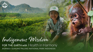Health in Harmony ~ Indigenous Wisdom for the Earth