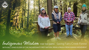 Saving Fairy Creek Forest ~ Indigenous Wisdom for the Earth