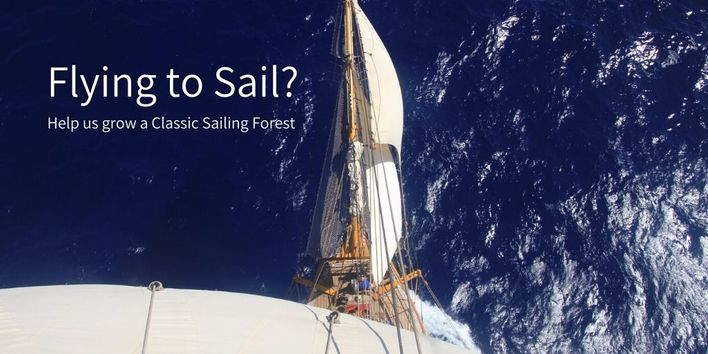 Classic Sailing Forest